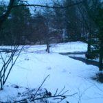 別荘の冬 雪が積もってて季節の変化の速さに驚いた